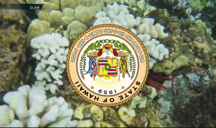 Hawaii Kills All Oxybenzone Bills.png